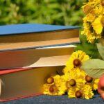 Módulo 2: Bases pedagógicas y principios metodológicos sobre pedagogía activa.
